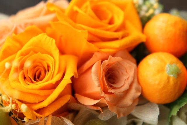 image_orange02