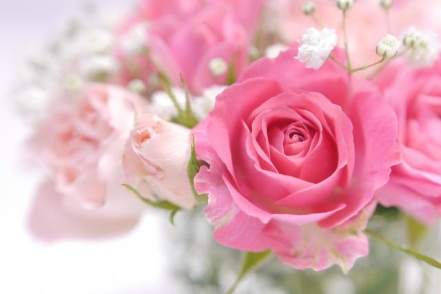image_pink02