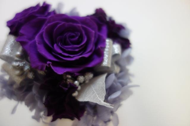 image_purple02